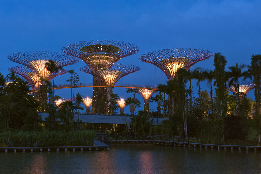 'Lighted Supertrees' (Jul 2012) - Gardens by the Bay, Singapore